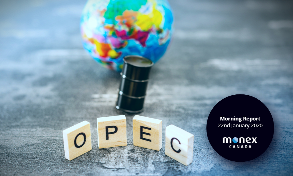 Loonie sent tumbling by OPEC comments and poor data